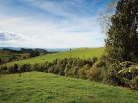 New Zealand's Zero Carbon Bill a Mixed Bag for Farmers